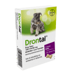 Drontal Hund