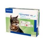 Effipro DUO spot-on Katze