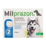 Milprazon Hund