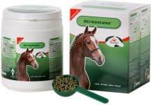 PrimeVal StressLess Pferd