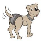 Rubycare-Hundehosen