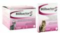 Milbactor-Großkatzen 4 Tabletten