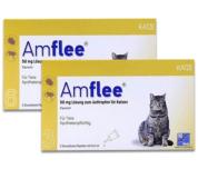 Amflee Spot-on Katzeam
