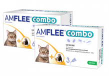 Amflee Combo Spot-on Katze
