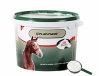 PrimeVal Gelatine-Pferd